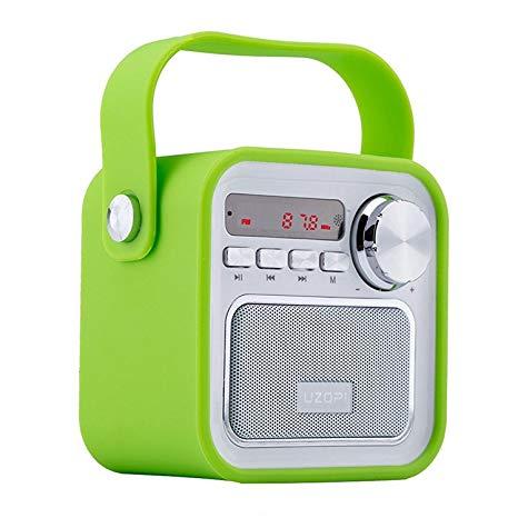 Altoparlanti Bluetooth con Radio, Radio Portatile FM Wireless
