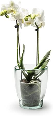 Jodeco - Vaso per orchidee in vetro riciclato, ecologico, 15 cm