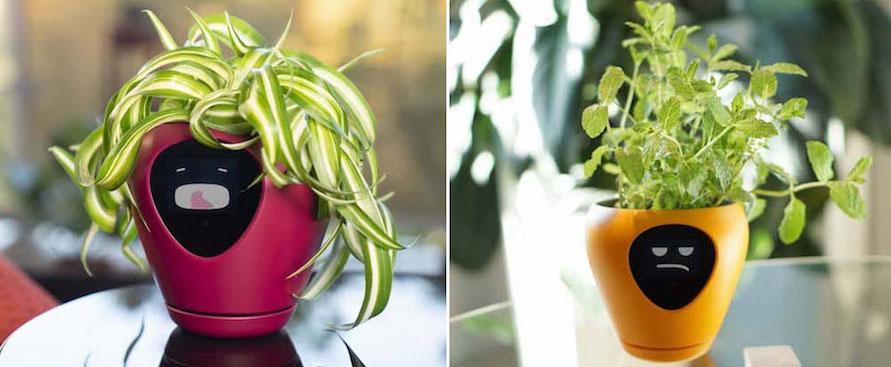 Il vaso smart che trasforma la tua pianta in un Tamagotchi - Wired