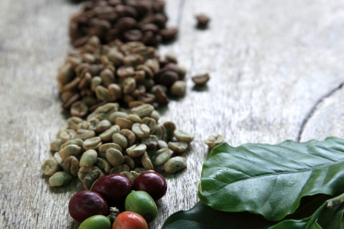 Concimi naturali: rimedi casalinghi per le piante | DonnaD